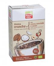 avena-crunchy-bio-con-cocco-nocciole-e-cacao-184656