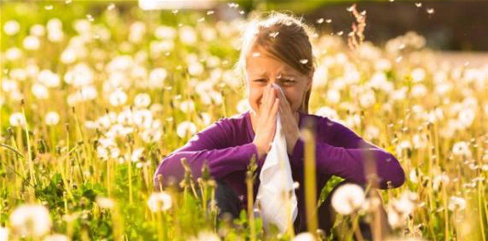 BLog alleergia pollini