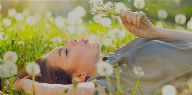 blog allergia polline