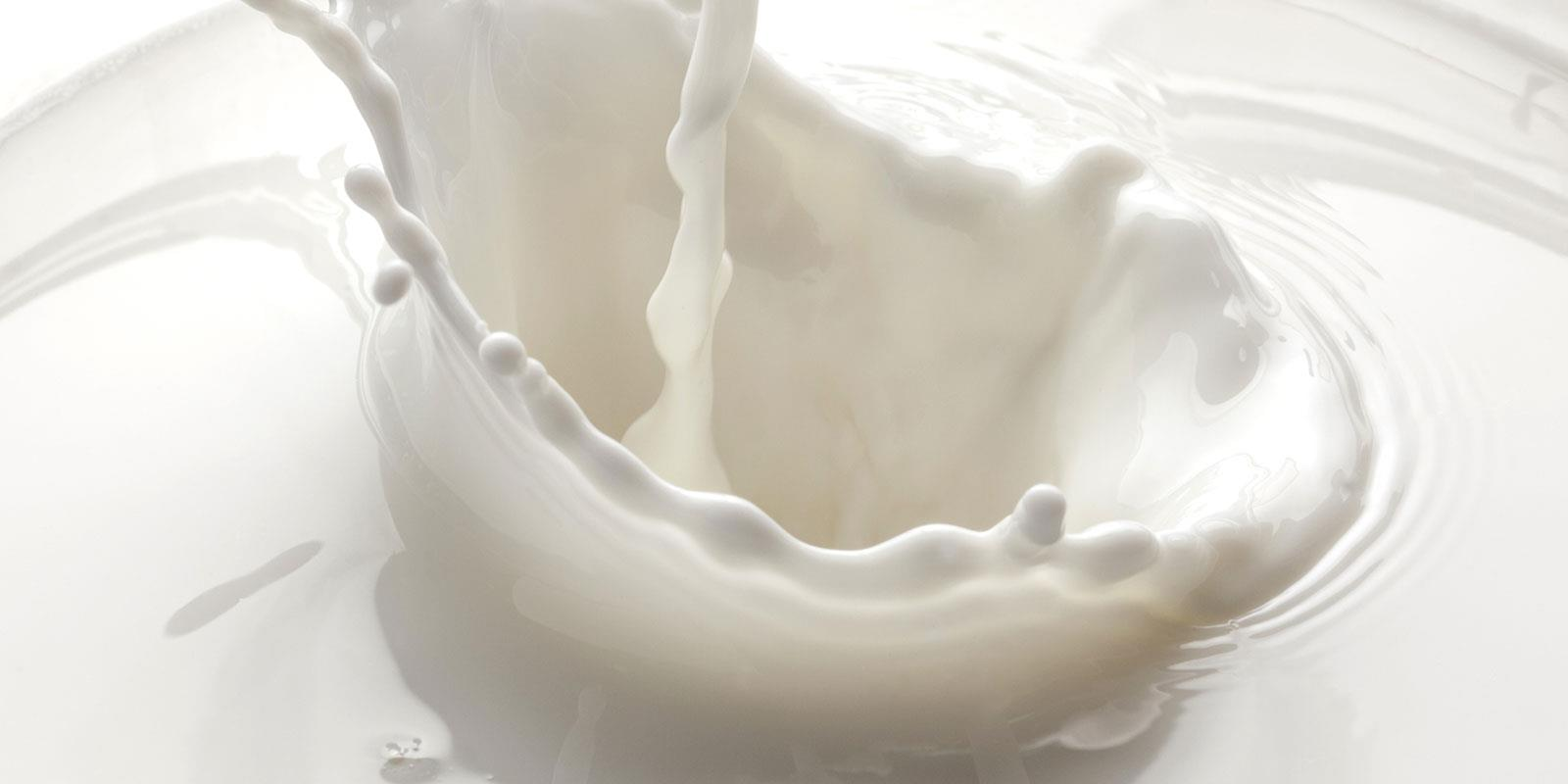 cibi-senza-latte