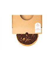 crostata gianduia 2
