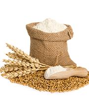 Farine lievito e sostituti del pane