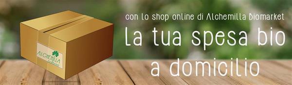 alchemilla shop online